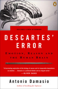 Descartes' Error