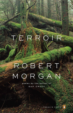 Terroir by Robert Morgan
