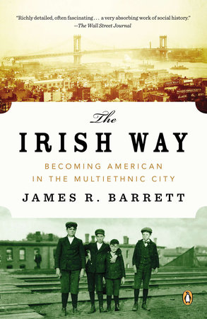 The Irish Way by James R. Barrett