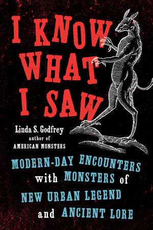 I Know What I Saw by Linda S Godfrey