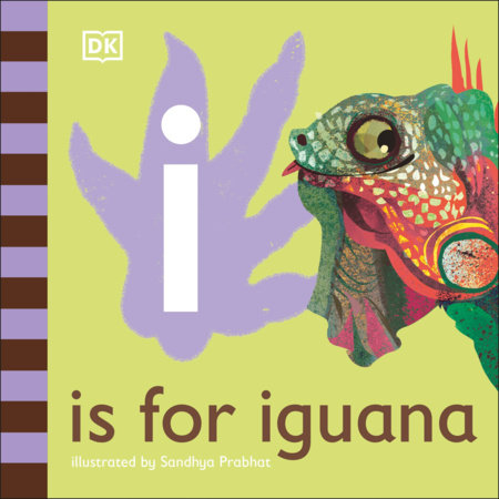 I is for Iguana by DK