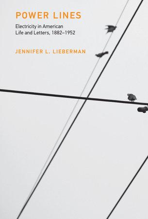 Power Lines by Jennifer L. Lieberman