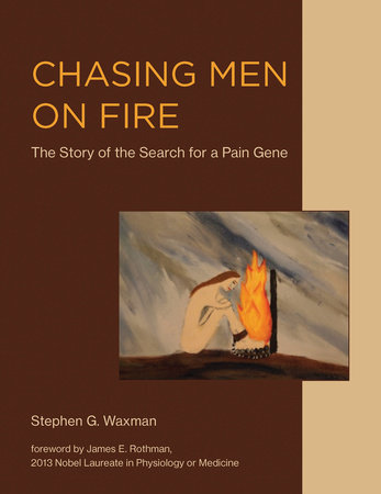 Chasing Men on Fire by Stephen G. Waxman