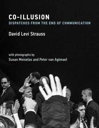 Co-Illusion by David Levi Strauss