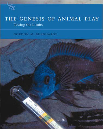 The Genesis of Animal Play by Gordon M. Burghardt