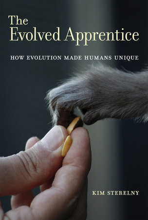 The Evolved Apprentice by Kim Sterelny