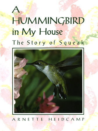 A Hummingbird in My House by Arnette Heidcamp