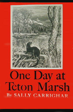 One Day At Teton Marsh by Sally Carrighar