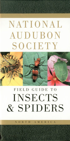 National Audubon Society Field Guide to Insects and Spiders by National Audubon Society