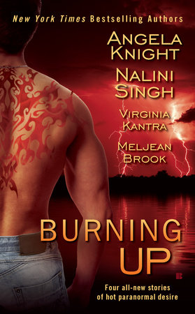 Burning Up by Angela Knight, Nalini Singh, Virginia Kantra and Meljean Brook