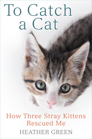 To Catch a Cat by Heather Green