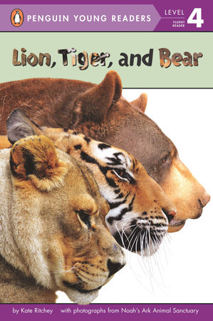 Lion, Tiger, and Bear by Kate Ritchey