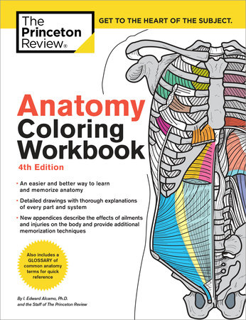 Anatomy Coloring Workbook, 4th Edition by The Princeton Review and Edward Alcamo