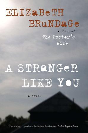 A Stranger Like You by Elizabeth Brundage