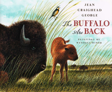 The Buffalo Are Back