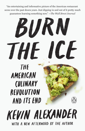 Burn the Ice by Kevin Alexander