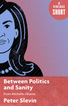 Between Politics and Sanity by Peter Slevin