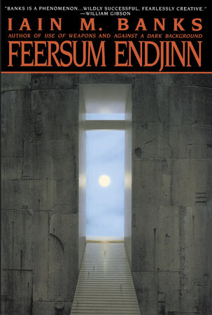 Feersum Endjinn by Iain Banks