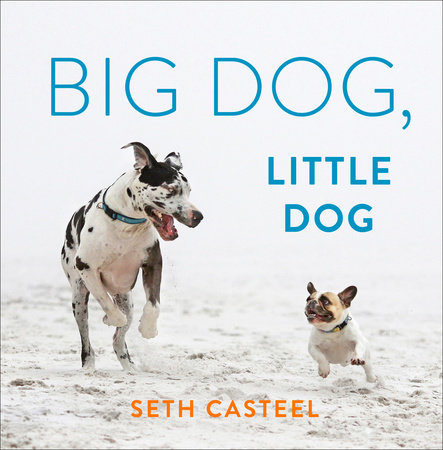 Big Dog, Little Dog by Seth Casteel