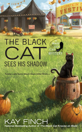 The Black Cat Sees His Shadow by Kay Finch