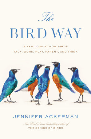 The Bird Way by Jennifer Ackerman