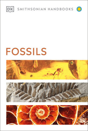 Fossils by DK