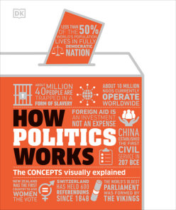 How Politics Works