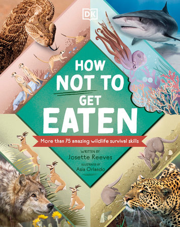 How Not to Get Eaten by Josette Reeves