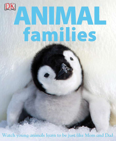 Animal Families by DK