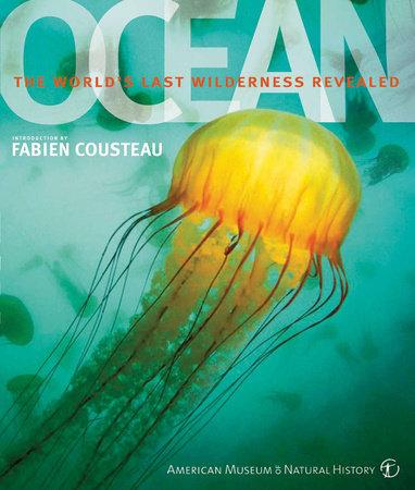 Ocean by Robert Dinwiddie, Philip Eales and Sue Scott