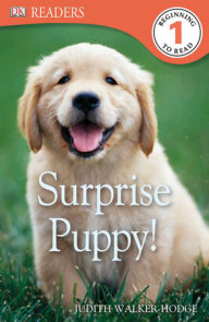 DK Readers L1: Surprise Puppy