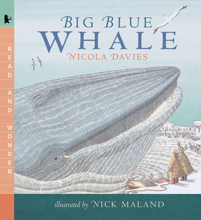 Big Blue Whale by Nicola Davies