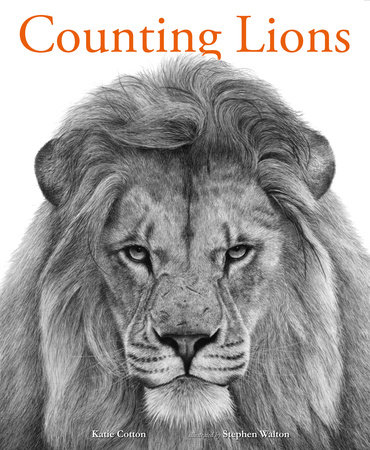 Counting Lions: Portraits from the Wild by Katie Cotton