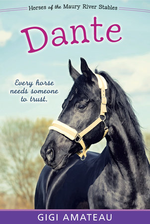 Dante: Horses of the Maury River Stables by Gigi Amateau