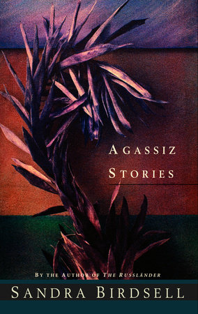 Agassiz Stories by Sandra Birdsell