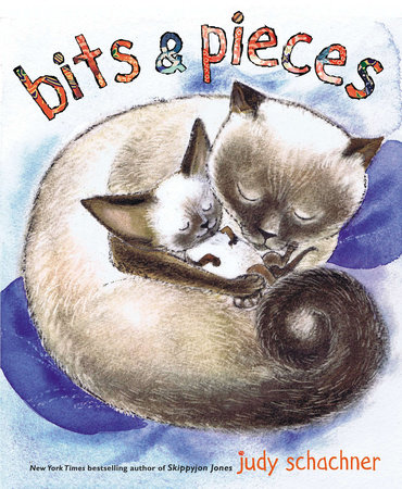 Bits & Pieces by Judy Schachner