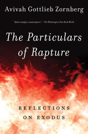 The Particulars of Rapture by Avivah Gottlieb Zornberg