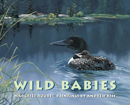 Wild Babies by Margriet Ruurs