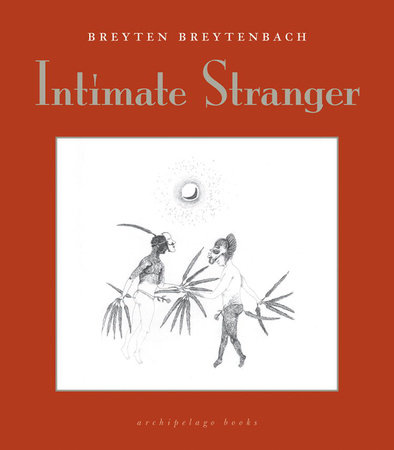 Intimate Stranger by Breyten Breytenbach