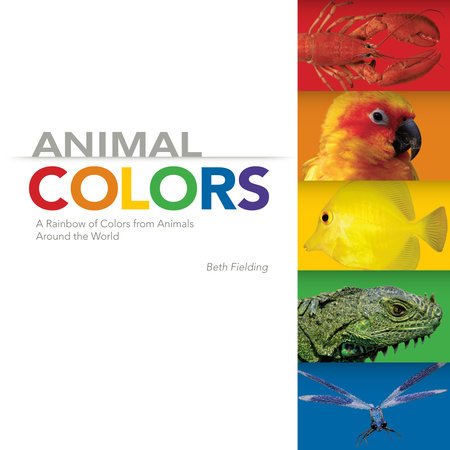 Animal Colors by Beth Fielding