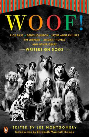 Woof! by