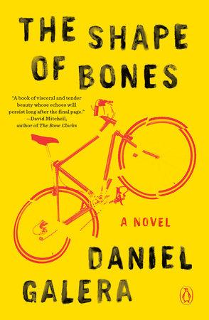 The Shape of Bones by Daniel Galera