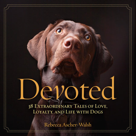 Devoted by Rebecca Ascher-Walsh