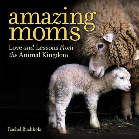 Amazing Moms by Rachel Buchholz