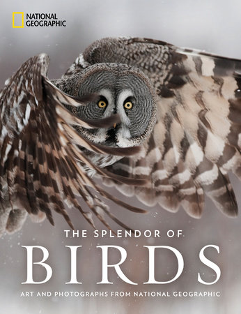 The Splendor of Birds by National Geographic