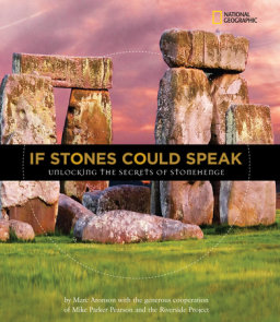 If Stones Could Speak