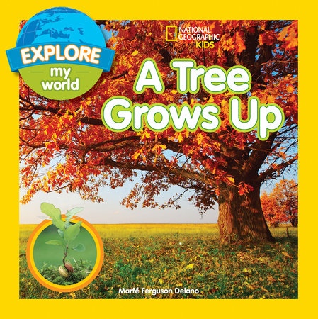 Explore My World A Tree Grows Up by Marfe Ferguson Delano