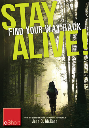 Stay Alive - Find Your Way Back eShort by John McCann