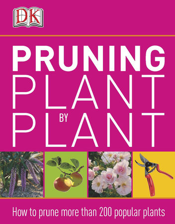 Pruning Plant by Plant by DK