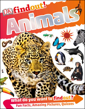DKfindout! Animals by DK